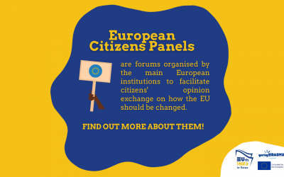 The European Citizens' Panels: facilitating citizens' opinion exchange at the EU level